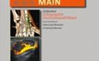 Echographie du poignet et de la main