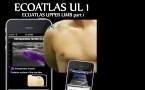 ECOATLAS Upper Lamb 1, 2 et 3